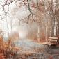 Св.Макариј Оптински - За утеха во жалоста