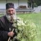 Севастијан Картагински: Што ли ќе ожнее човекот во нивата на својата душа?