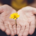 Размислувања за животот со рак – I дел