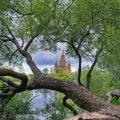 За коронавирусот, верата и осветителната Благодат на Црквата (31.03.2020)